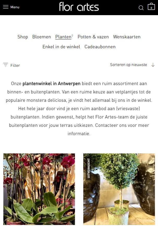 WooCommerce webshop categoriebeschrijving